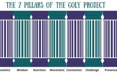 The 7 Critical Pillars of The GOLY Project