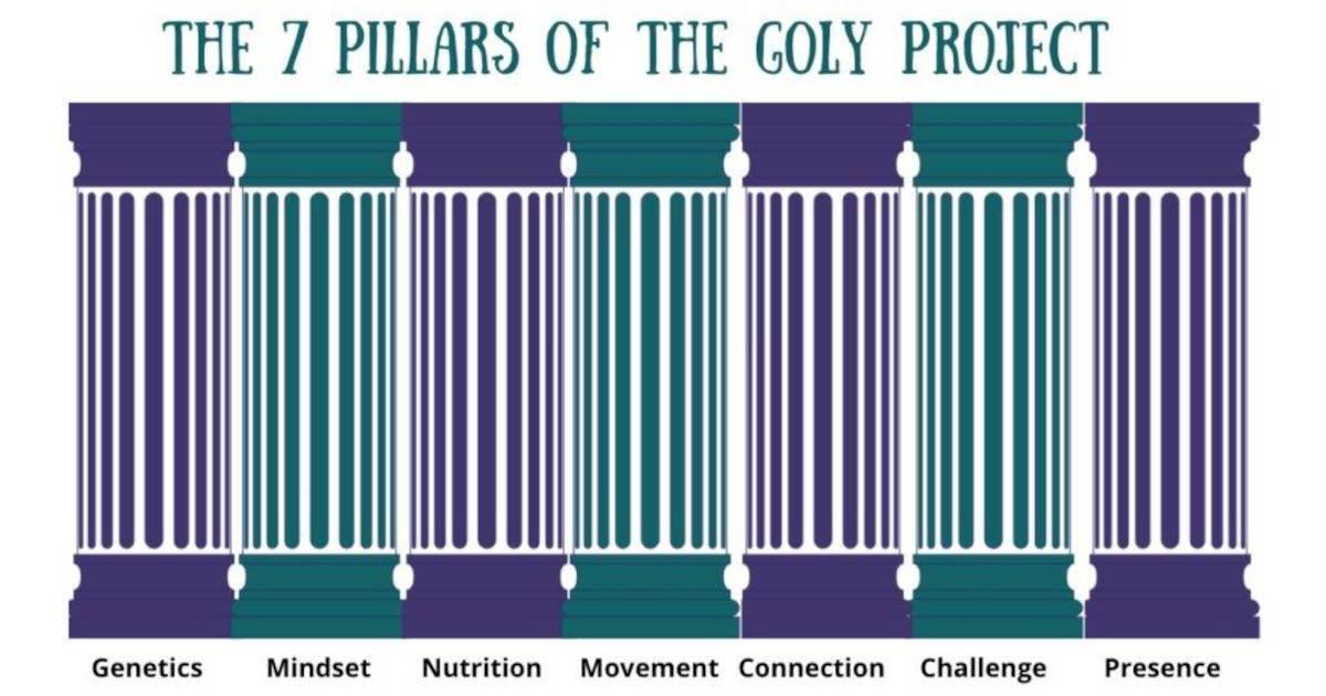 7 Pillars | Ask Dr. Gill