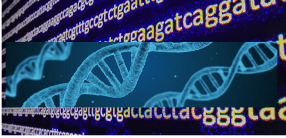 DNA – Your Blueprint and Whence it Came