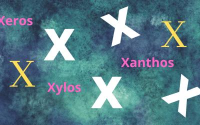 Xantho-  Xeros-  Xylo